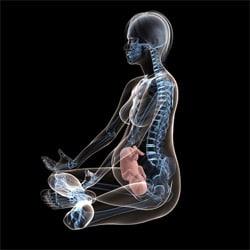 Беременность и рентгенологические исследования