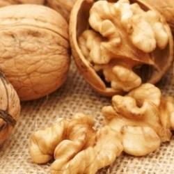 Грецкие орехи при грудном вскармливании